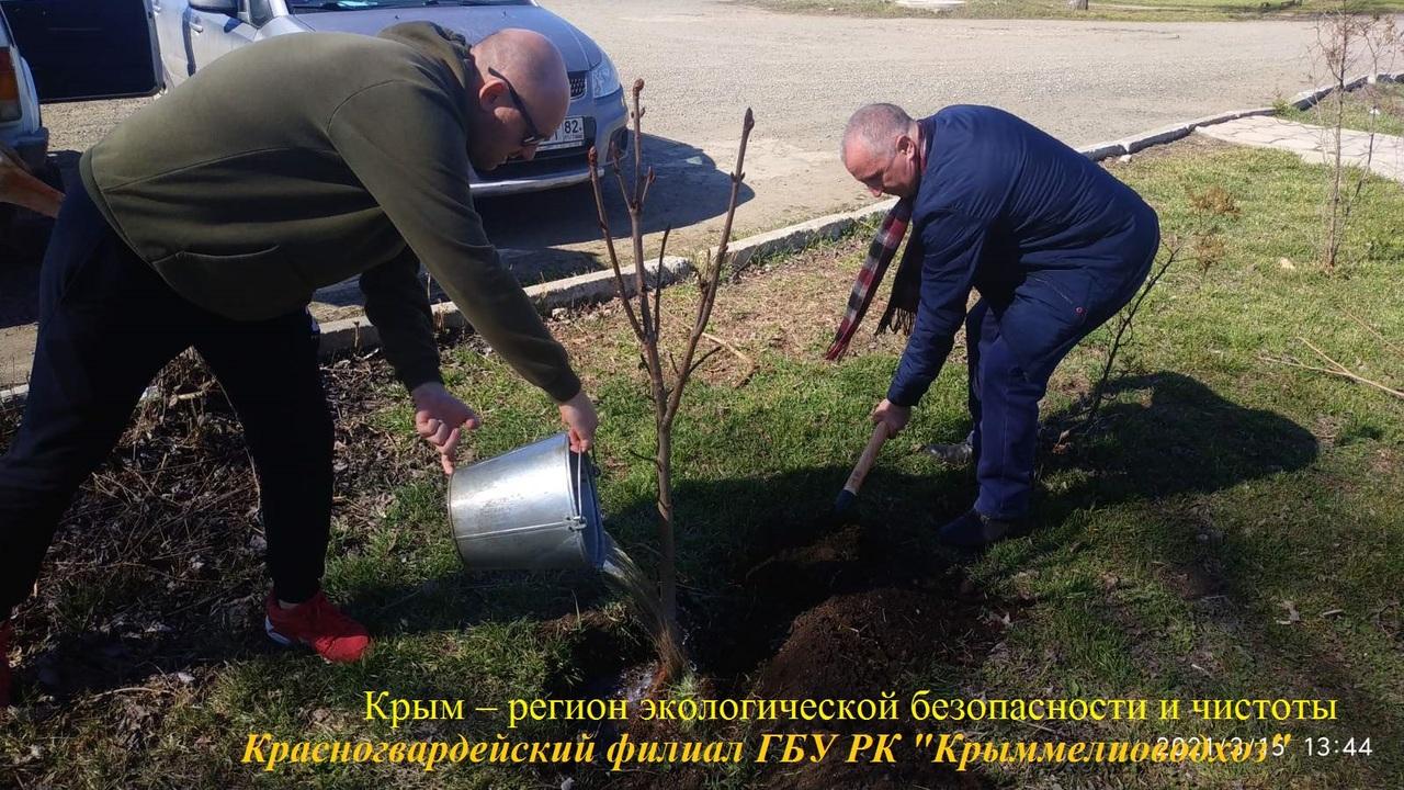 Игорь Вайль: В апреле-мае пройдут основные мероприятия ежегодной экологической акции «Крым – регион экологической безопасности и чистоты»